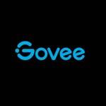 Govee screenshot