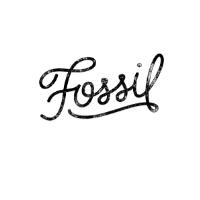 Fossil AU screenshot
